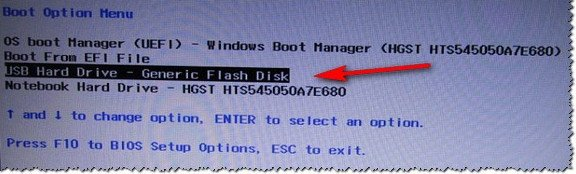 Пример Boot Menu - ноутбук HP (Boot Option Menu).