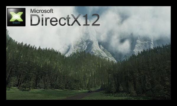 Картинка с лесом и надписью DirectX 12