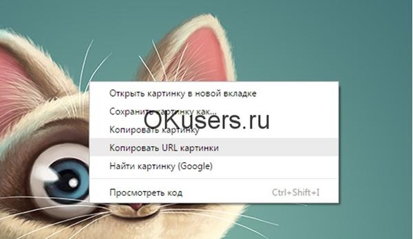 Копируем URL картинки