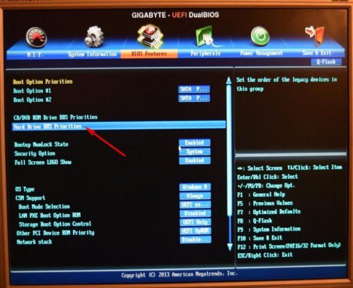Переходим в раздел «Hard Drive BBS Priorities», нажимаем «Enter»