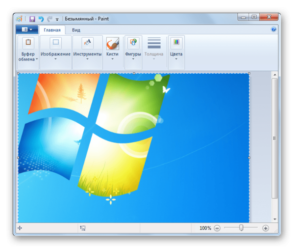 При помощи комбинации клавиш Ctrl+V вставляем скриншот в программу Paint