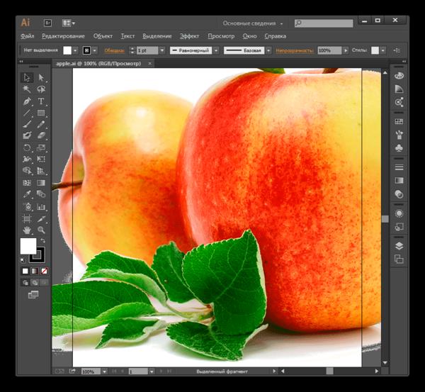 Содержимое файла в формате AI открыто в программе Adobe Illustrator