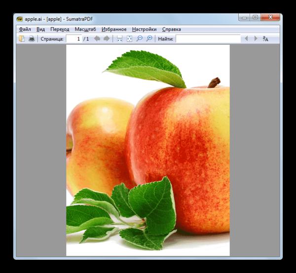 Содержимое файла в формате AI открыто в программе SumatraPDF