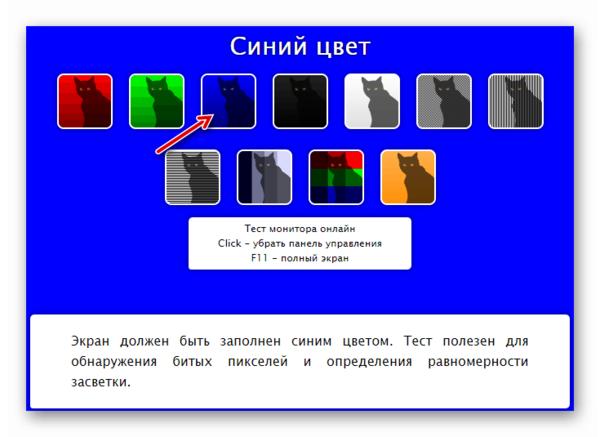 Страница с синей подложкой в онлайн-сервисе CatLair
