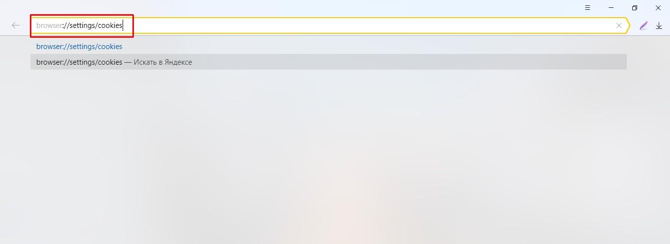 Как открыть управление файлами cookie в «Яндекс.Браузере»