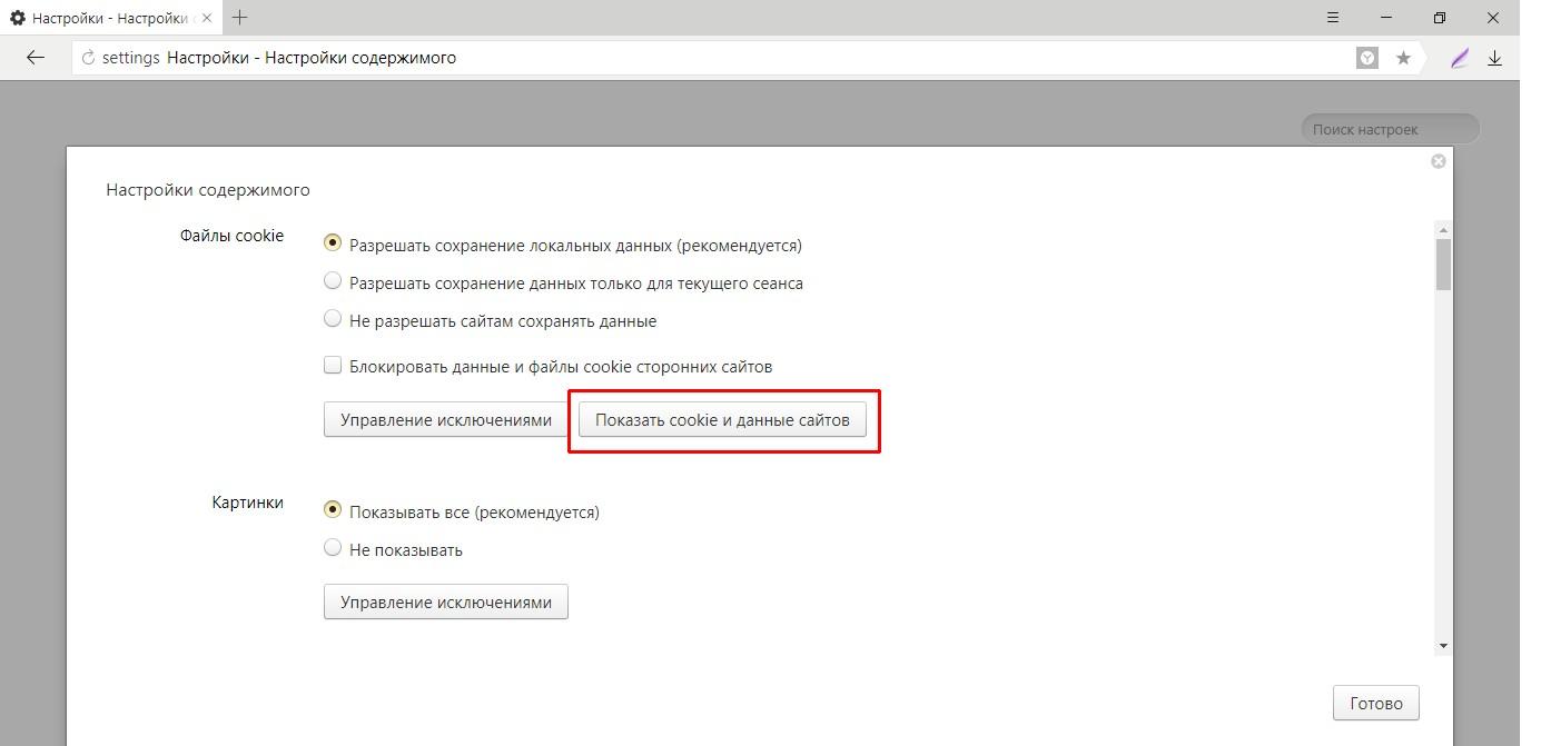 Как показать cookie в «Яндекс.Браузере»