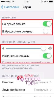 Возможно, на iPhone отключен звук