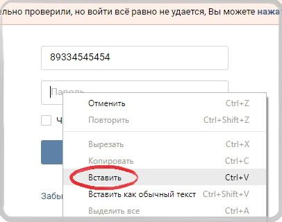 Вставляем скопированный пароль .