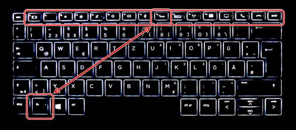 Просмотр осмотра клавиш F1-F12 на ноутбуке HP