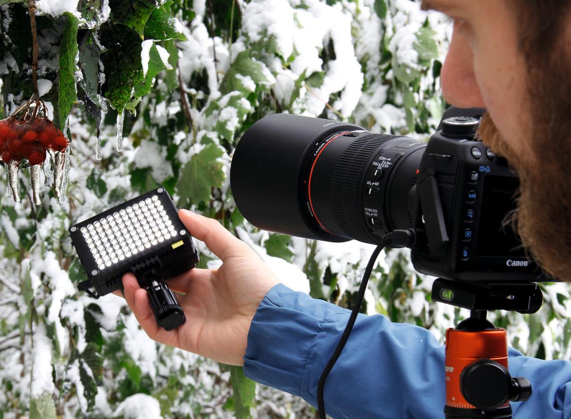 Как снимать макро: В непосредственной близости от объекта съемки используйте естественное освещение. Или же можно осветить объект, например, с помощью светодиодной лампы.